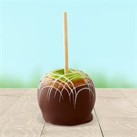 Fresh Chocolate Caramel Covered Apple