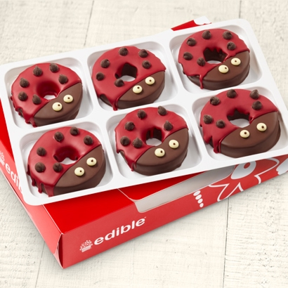 Edible Donuts Lady Bug