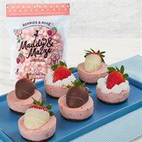 Strawberry Cheesecake Crunch Indulgence Bundle