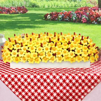 Abundance of Daisies