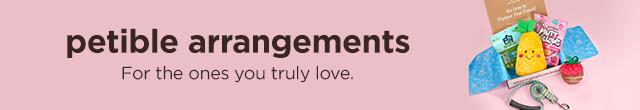 Petible Arrangements